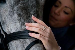 Equestrian Rings