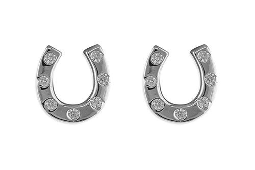 Horseshoe Cubic Zirconia Earrings
