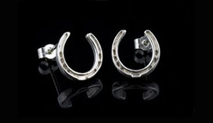 Horseshoe Earrings